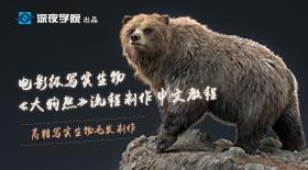 电影级写实生物《大狗熊》流程制作教程